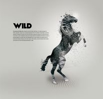 Wild by karmagraphics