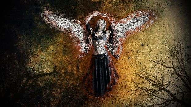 Fall of an angel by nomadOnWeb