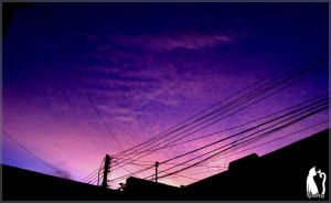 Sunrise Colors by Talty