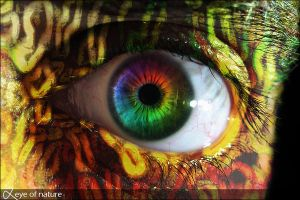 Eye of nature by emam013