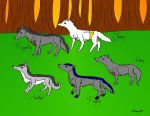 Fingolfinian Wolf Pack by Ataraxia25
