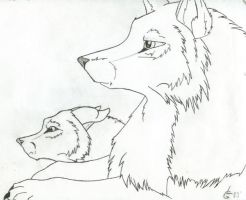 Wolves by lyndz
