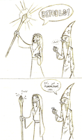 The Wizard's Duel by Skandranon01