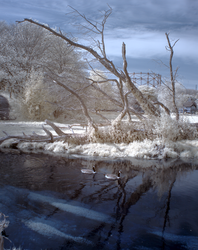 Boxmoor in infrared by bmh1
