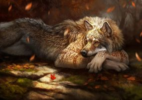 Red Gold (Werewolf calendar 2016) by ailah