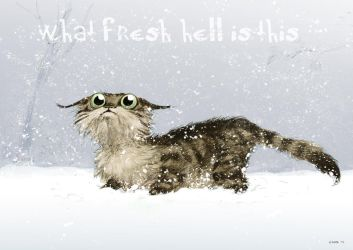 Unhappy Cat In Winter (Christmas card 2013) by Pika-la-Cynique