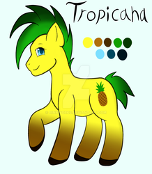 Tropicana Reference by RinnWorks