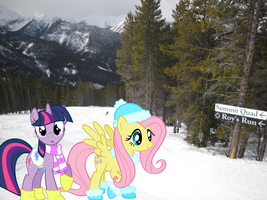 Twilight and Fluttershy in Winter by Vomwerth