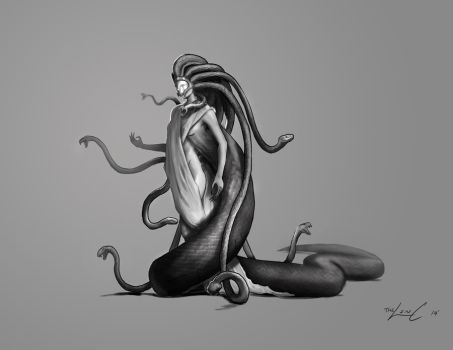 Medusa Redesign by thelincdesign