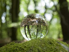 Crystal ball in the woods by Inilein