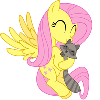 Fluttershy and Raccoon by adcoon