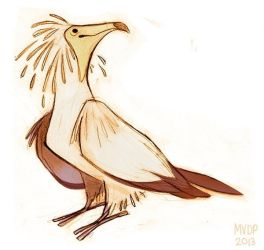 Egyptian Vulture by sketchinthoughts