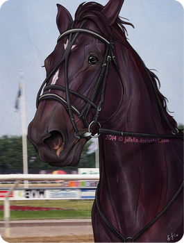 A Good Season For the Trotter by Jullelin