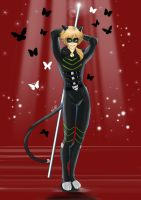 Chat Noir - my vision by Cain88
