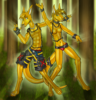 Dancing Roos by Lord-Kiyo