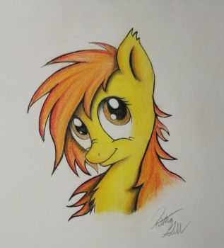Spitfire by Pajaga