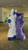 BronyCon 2013 Shining Armor + Twilight Sparkle by GmanCommand