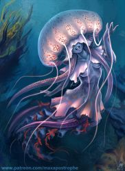 Jellyfish by Maxa-art