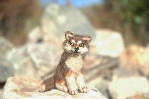 Needle Felted Wolf ...Jacob? by amber-rose-creations
