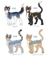 Adoptable Cats Litter 4 by funlakota