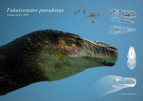 A profile of Fukuivenator paradoxus by reminegrest
