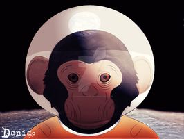 Moon Chimp by daniacdesign