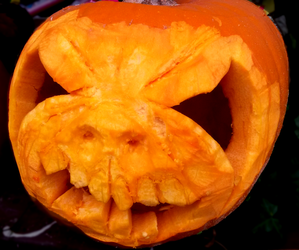 Spoopy Jack-O-Latern! by Whyled-Card