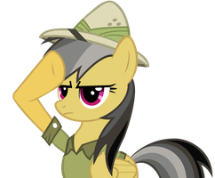 Daring Do Salute Vector by BC-Programming