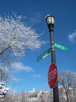 Corner of Sheridan and Haven by salias