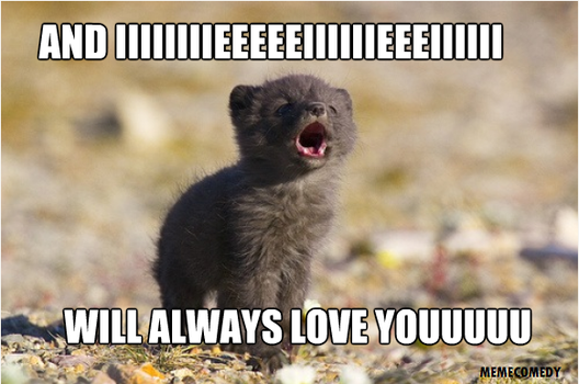 Funny Memes About Love : I love you like no otter funny meme images wall k