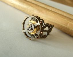 Steampunk Ring by FantasyDesigns1