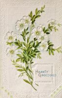 Hearty Greetings In White by Yesterdays-Paper