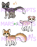 heres some more cats by mars-adopts
