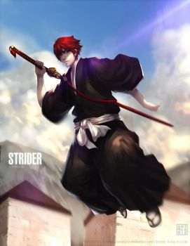 Strider A Day in Life by ArtofLariz