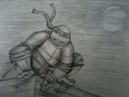 Raph in Moonlight by carriehowarth