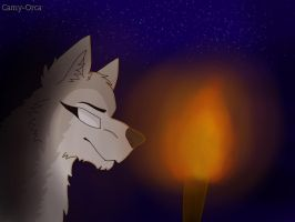 The missing light by Camy-Orca