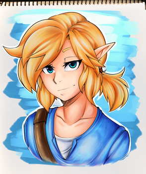 Breath of the Wild: Link by RainbowScreen