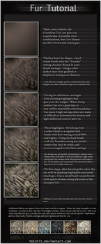 Fur Tutorial by NukeRooster