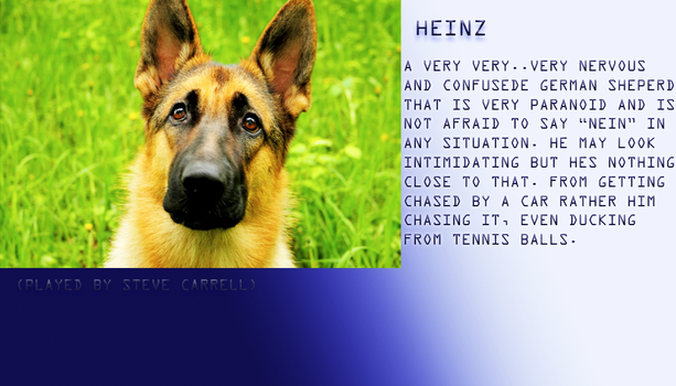 Heinz Profile by Cinemutt14
