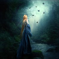 +Magic forest+ by Dracona666