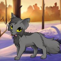 Graystripe(On Avatar Maker) by ShadowTheLeader