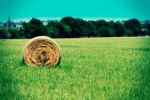 Hay Bale by PhillyPuddy