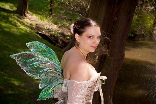 Spring Magic Fairy wings by ibukij