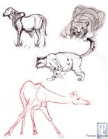 Animal Drawing Mid-Term Page 3 by mell0w-m1nded
