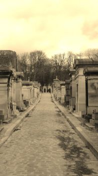 Cemetery alley by Asphal