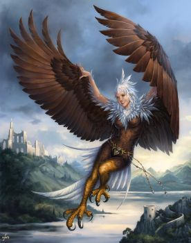 Flying Harpy by Candra
