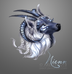 Nienn by areot