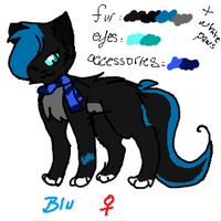 Blu  Reference Sheet by SilverKitti