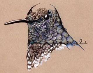 Inky Hummingbird by kleinmeli