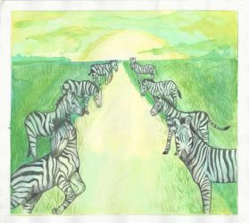 Zebras (1 of 4) by ErinDromeda